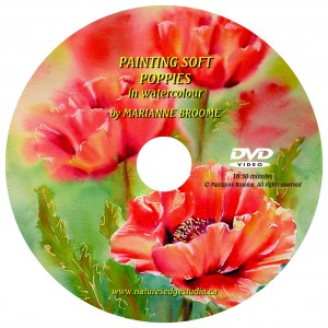 Painting Soft Poppies